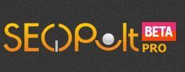 Логотип seopult